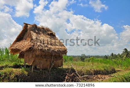 A rice shed in Indonesia - stock photo