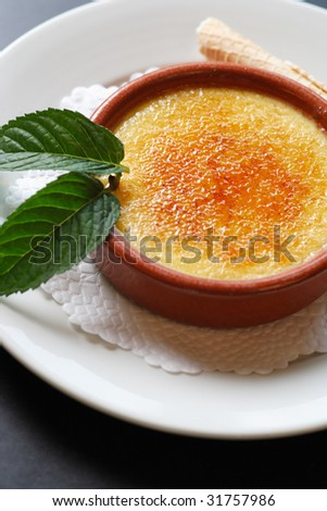 A rich traditional french dessert.  Macro shot with selective focus on middle of topping. - stock photo