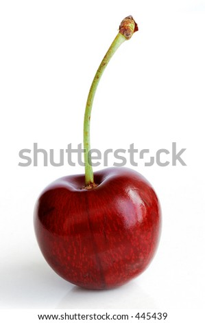 A ripe, juicy cherry - stock photo