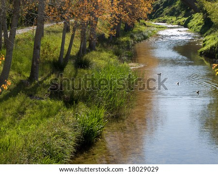 A river flowing with some trees on the riverbank