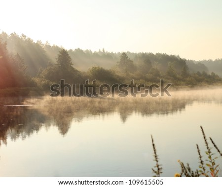 A river on a foggy morning