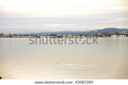 A river's edge-2 - stock photo
