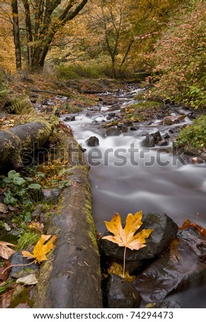 A river winds through a river on a fall day - stock photo
