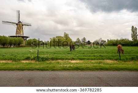 A road along the pastureland with horses and an old mill - stock photo