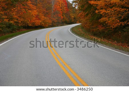 A road bends through trees in autumn