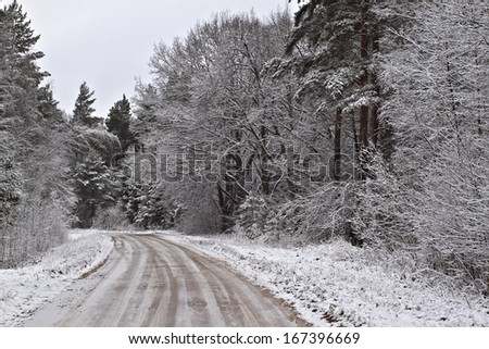 A road in the wood with the first snow of winter.