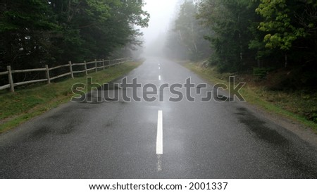 A road leading through a forest cast in fog. - stock photo