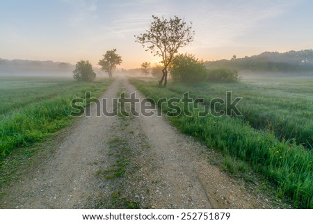 A road leading through a nature reserve on an early spring morning - stock photo