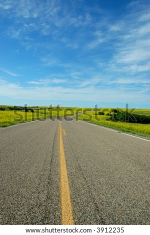 A road runs through a large field of mustard plants in Theodore Roosevelt National Park. - stock photo