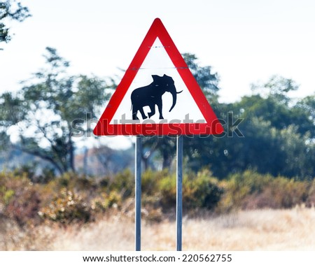 A road sign warns of the danger of collision with an elephant on the road - Namibia