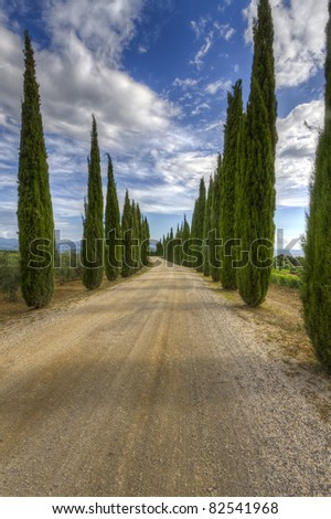A road through the beautiful countryside flanked with Cypresses in Tuscany, Italy - stock photo