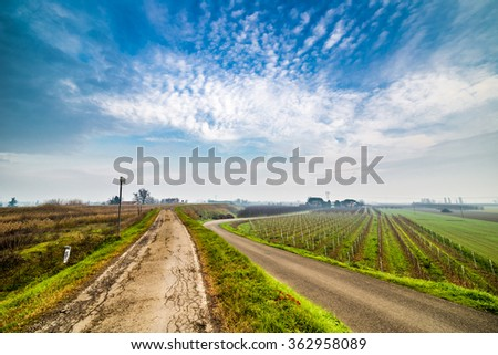 a road through the cultivated fields of the countryside of Emilia Romagna in the winter  fog in Italy