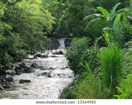 a roadside stream in the rainforest of Costa Rica - stock photo