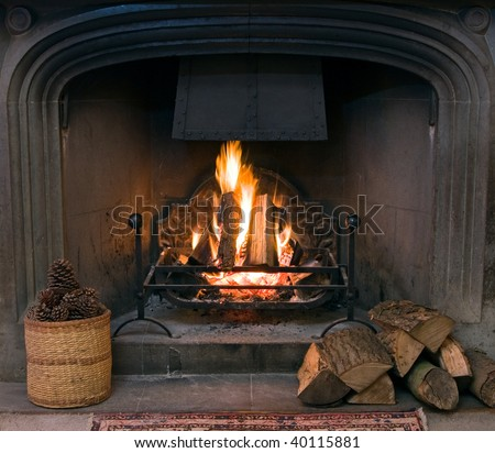 A roaring fire within a large stone arched fireplace, with pile of logs and basket of pine kernels in the foreground.