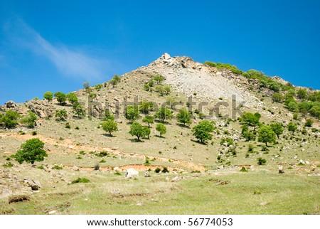 A rocky hill in Dobrogea region, Romania - stock photo
