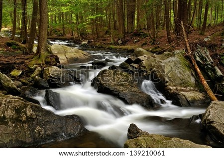 A rocky Vermont Brook flowing through a glowing green forest in the spring. - stock photo
