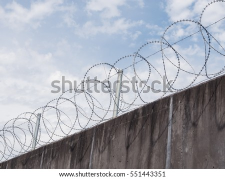 Roll Razor Wire Tops Concrete Wall Stock Photo (Safe to Use ...