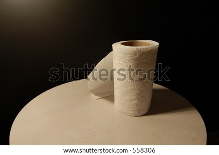 A roll of toilet paper - stock photo