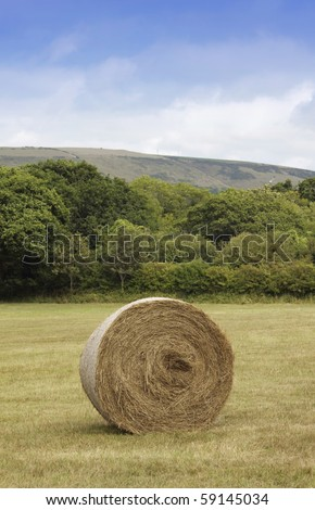 A round bail of hay in a green field. The Pembroke hills are visible to the background. Location near Swanage in Dorset, England, the gateway to the jurassic coast. - stock photo