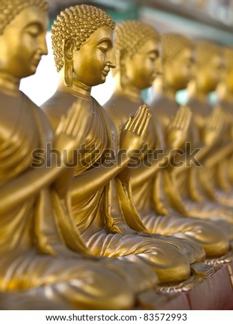 a row of golden buddha statue - stock photo