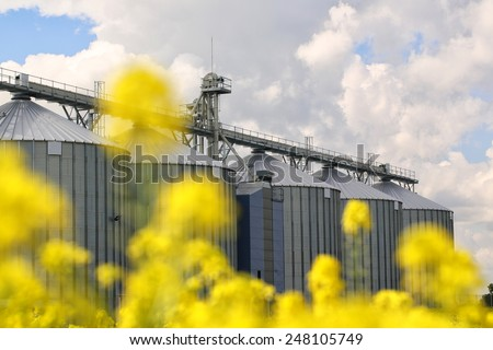 A row of grain silos surrounded by fields of rapeseed - stock photo