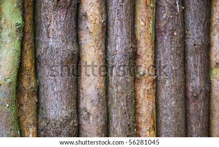 A row of logs. - stock photo