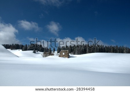 a ruined house in the jura mountains covered in a smooth carpet of snow with a pine forest behind. - stock photo