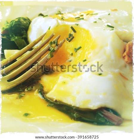 A runny fried egg, broken open with a fork on a bed of Swiss chard greens - stock photo
