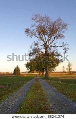 A rural countryside lane on a fall day - stock photo