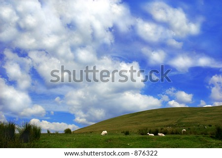 A rural hillside with sheep and  a blue sky with clouds. - stock photo