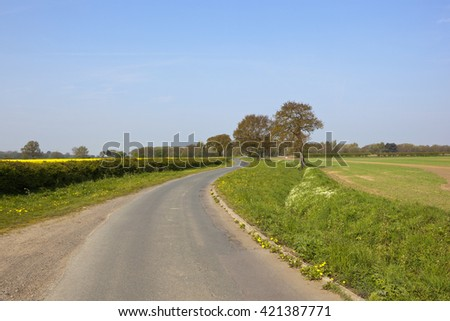 a rural lane winding through wheat and oilseed rape crops with oak trees under a blue sky in springtime - stock photo