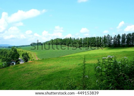 A rural scenery of town Biei of the hill and a white cloud and the blue sky