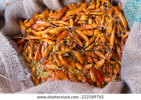 A sack full of dried hot yellow chillies in a sack at Market , Leh, India - stock photo