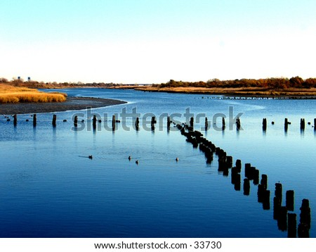 A Salt Marsh. - stock photo