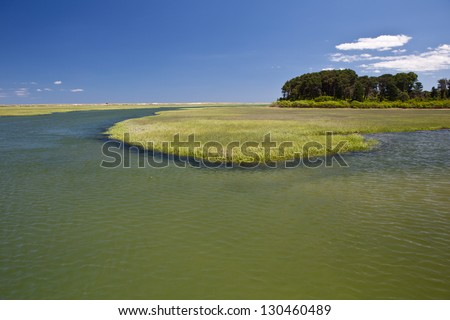 A salt marsh on Cape Cod, Massachusetts, serves as an important nursery for both fish and invertebrates that live in protected bays and in the open ocean. - stock photo