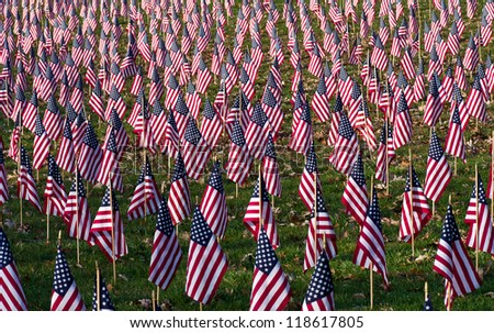 A Salute to Veterans - stock photo