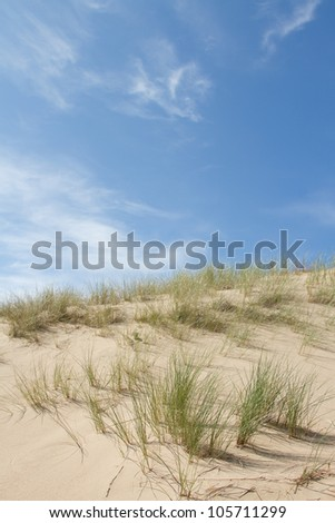 A sand dune on a sunny day with grasses against a bright blue sky with cloud. - stock photo