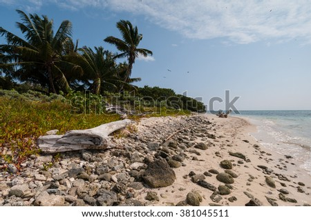 A sandy beach on Half Moon Caye, a World Heritage Site, Caribbean Sea, Belize