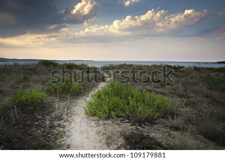 A sandy path through the dunes going towards the horizon