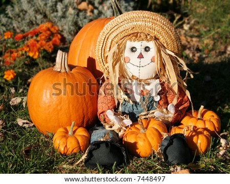 A Scarecrow in the Pumpkin Patch