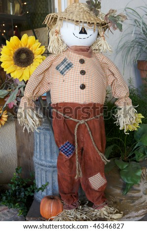 A Scarecrow standing up with a daisy behind him - stock photo