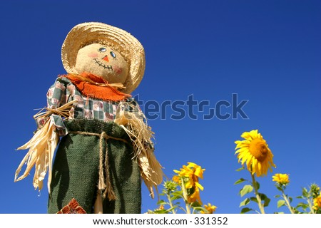 A scarecrow stands tall over a sunflower forest. - stock photo