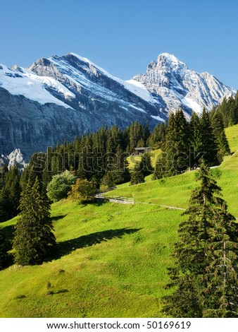 A scene with green grass, blue sky and snow-capped alps in Switzerland - stock photo
