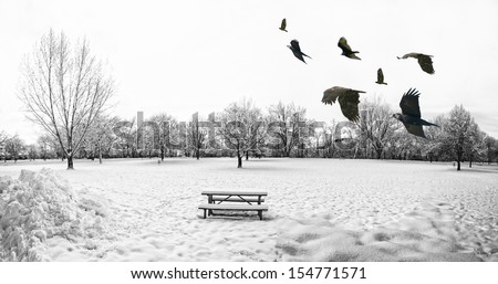 a scenic cold winter landscape with snow and trees and a flock of birds flying by - stock photo