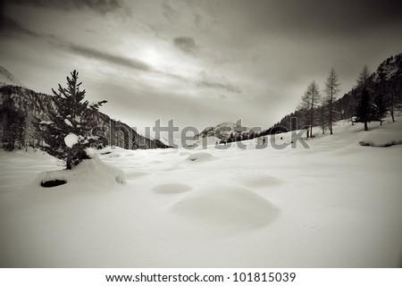 A scenic view of a winter landscape - stock photo