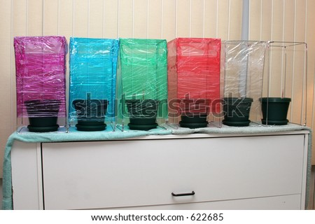 A school science project with plants growing under various colors of light. - stock photo