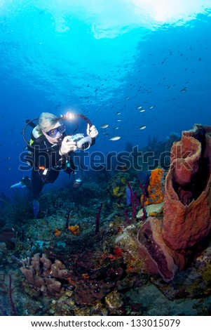 A scuba diver photographing the underwater world - stock photo