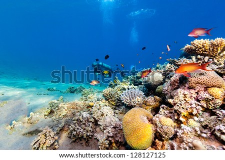A SCUBA diver swimming next to a coral pinnacle - stock photo