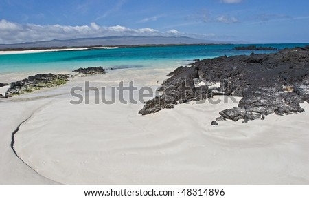 a sea lion takes a nap hidden between the rocks on the pristine beach of san cristobal galapagos - stock photo