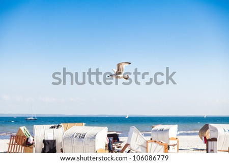 A Seagull flying over a Beach at the Baltic Sea - stock photo